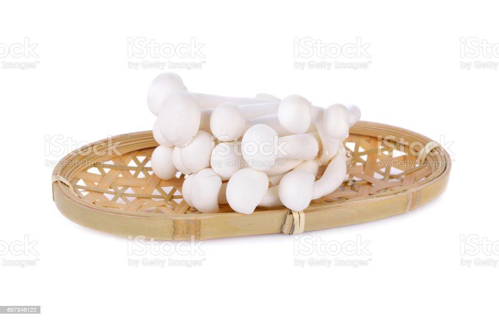 shimeji mushroom, white beech mushroom in bamboo basketon white background stock photo