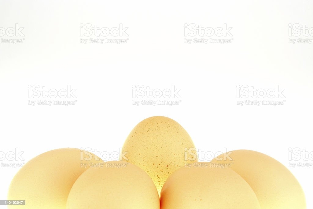 Shining egg stock photo