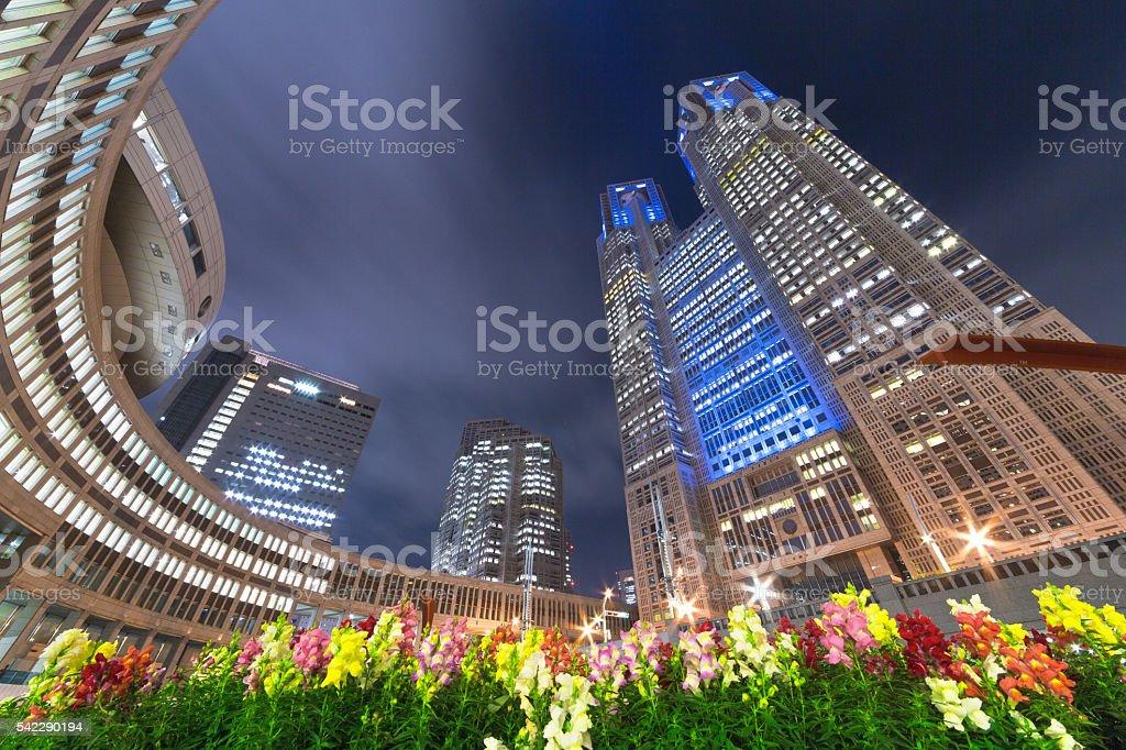 Shinjuku Metropolitan Government and the high-rise building night scene stock photo