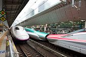 Shinkansens on platforms at Tokyo Station