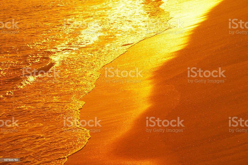 Shiny Beach royalty-free stock photo