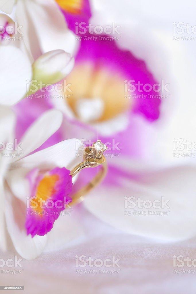 Shiny engagement diamond ring on orchid. stock photo