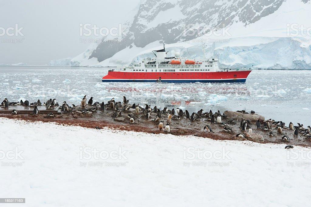 Ship in Neko harbour stock photo