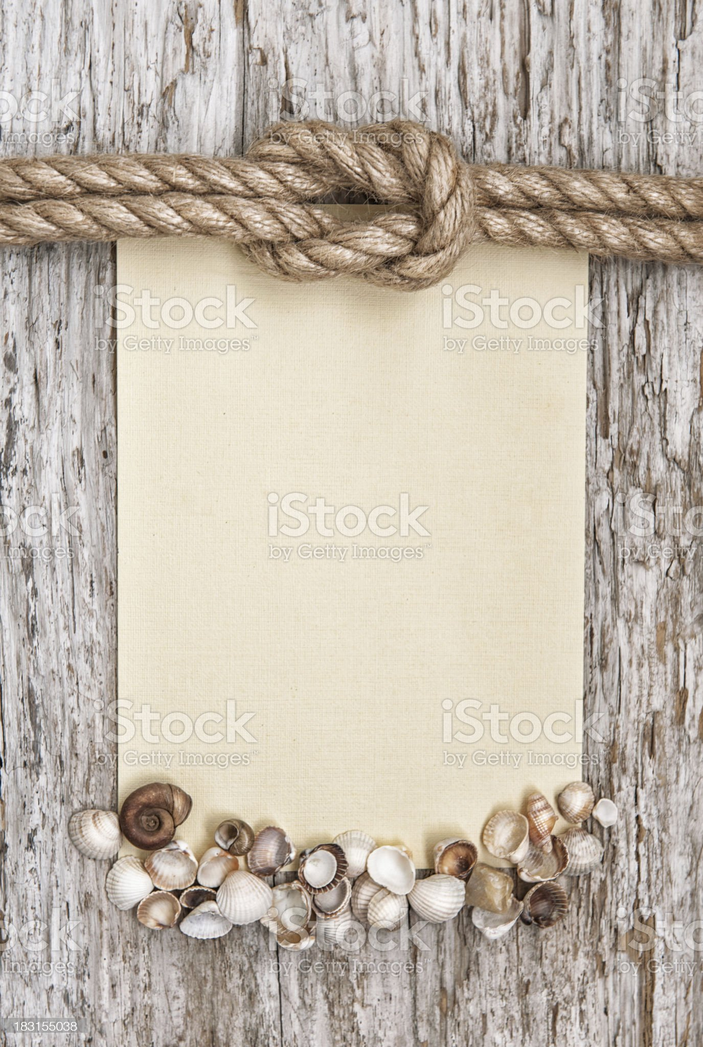 Ship rope, canvas, sea shells and wood background royalty-free stock photo