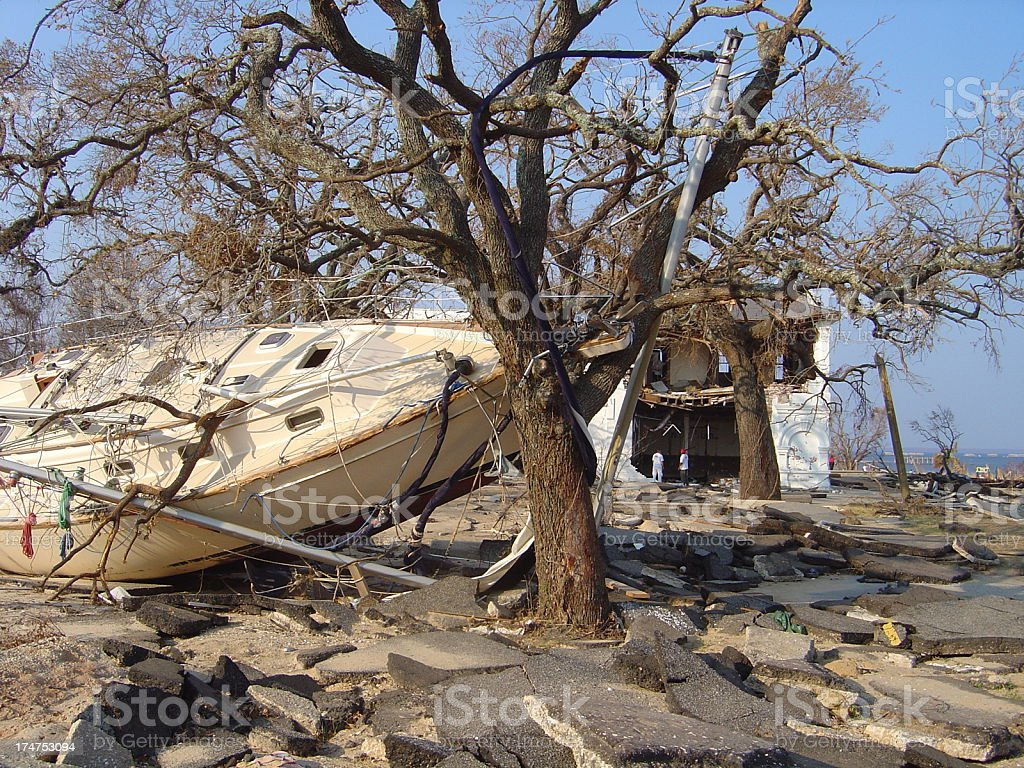 Ship washed up on a rocky area with a tree stock photo