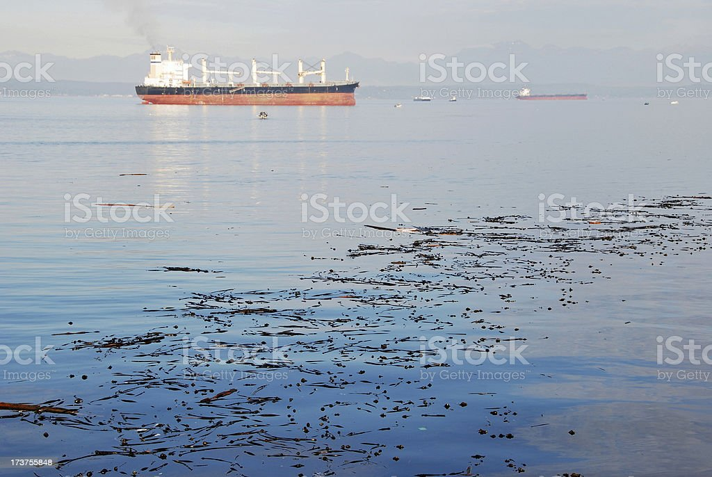 Ships at anchor in Puget Sound royalty-free stock photo