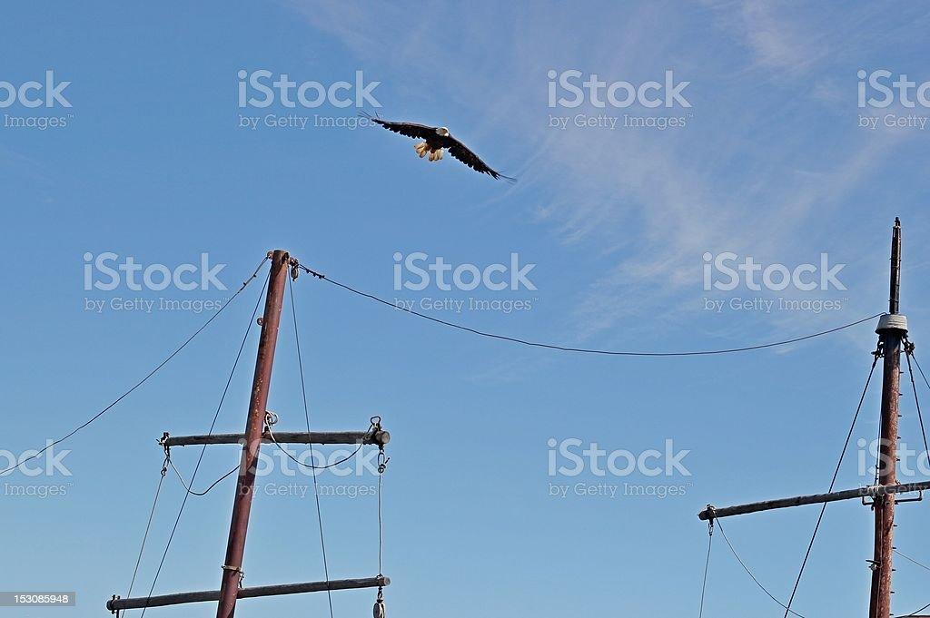 Ship's mast with eagle stock photo