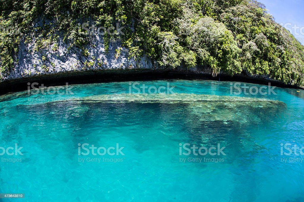 Shipwreck in Lagoon stock photo
