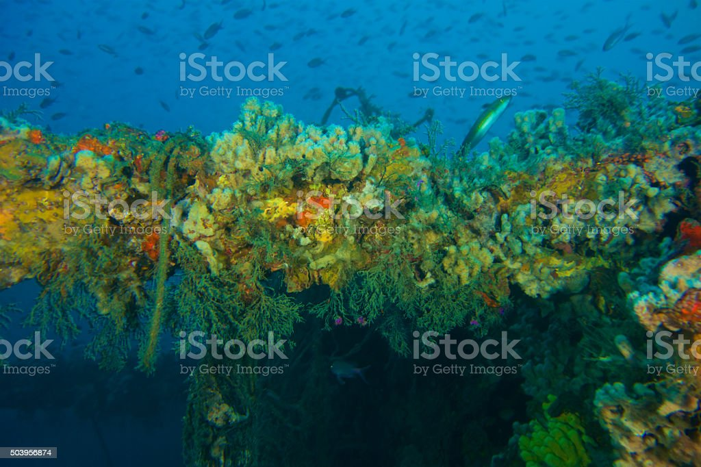 Shipwrecks in the Mediterranean stock photo