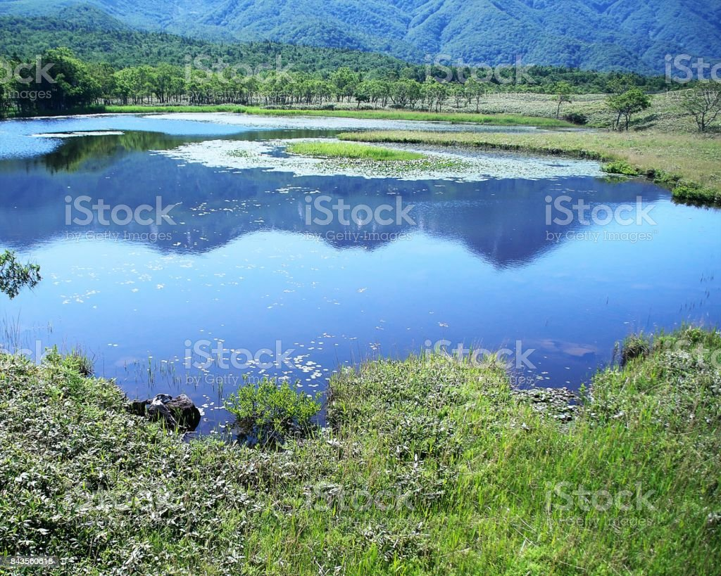Shiretoko of the world natural heritage stock photo