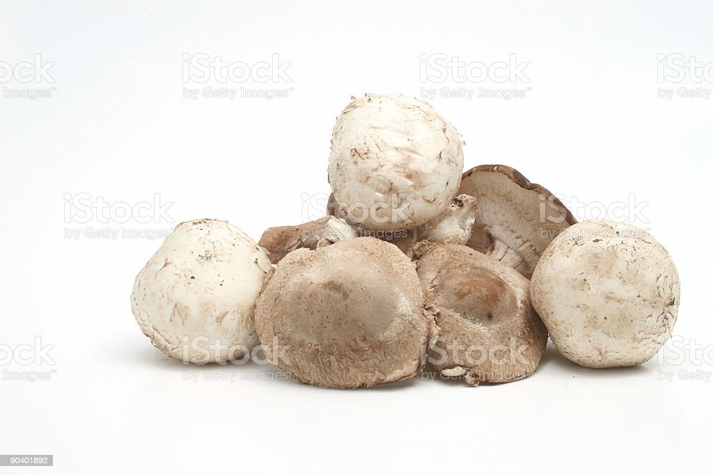 shitake and button mushrooms royalty-free stock photo