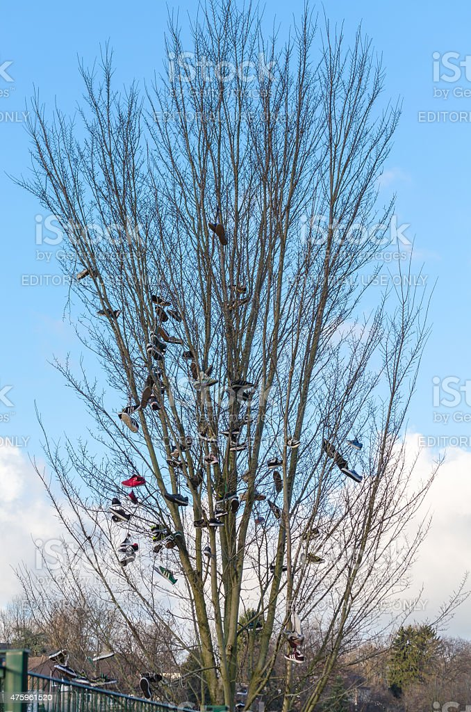 Shoe tossing or also called Shoefiti. stock photo