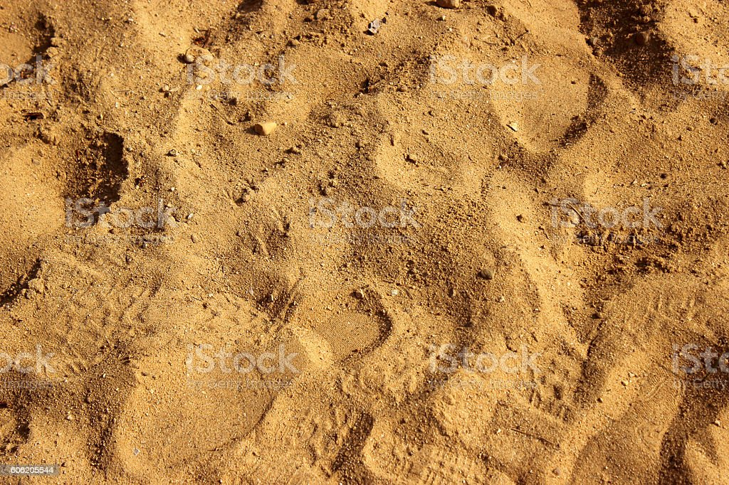 Shoeprints in Sand stock photo
