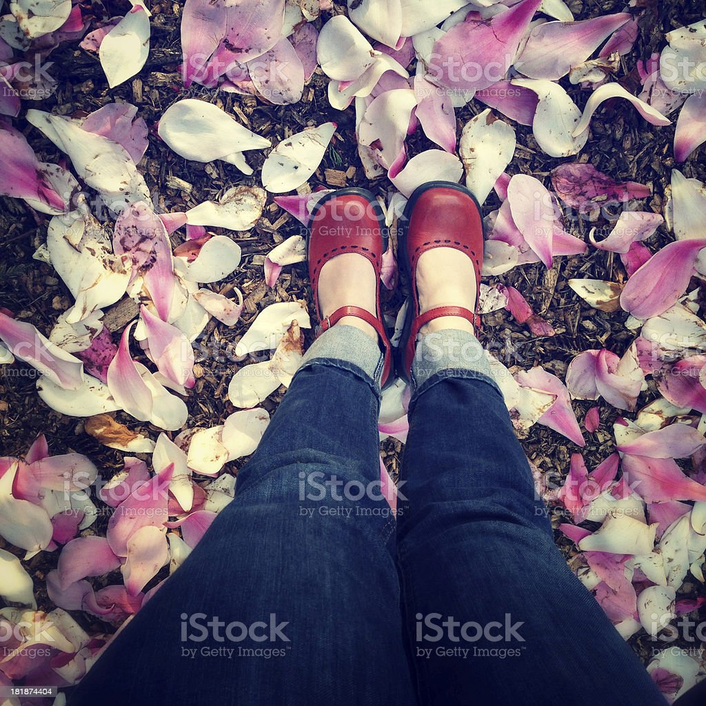 Shoes and flower petals stock photo