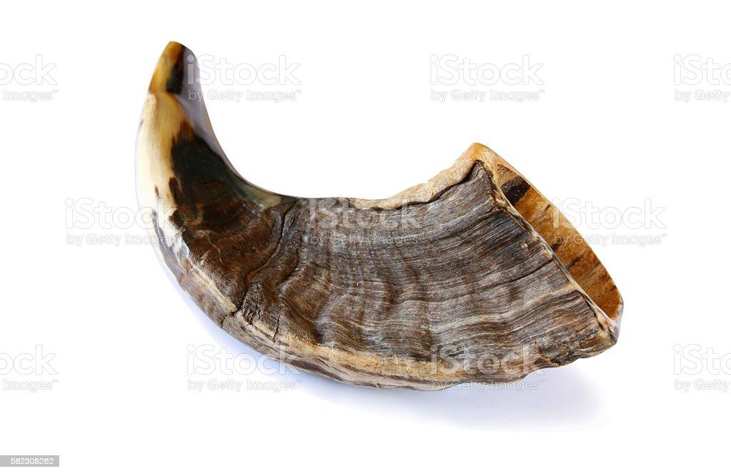Shofar (horn) isolated on white. jewish New Year holiday stock photo