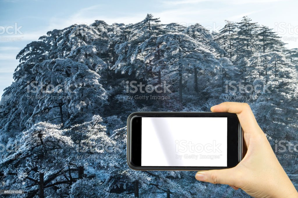 shoot photo with smartphone. Mountain Huangshan scenery. stock photo