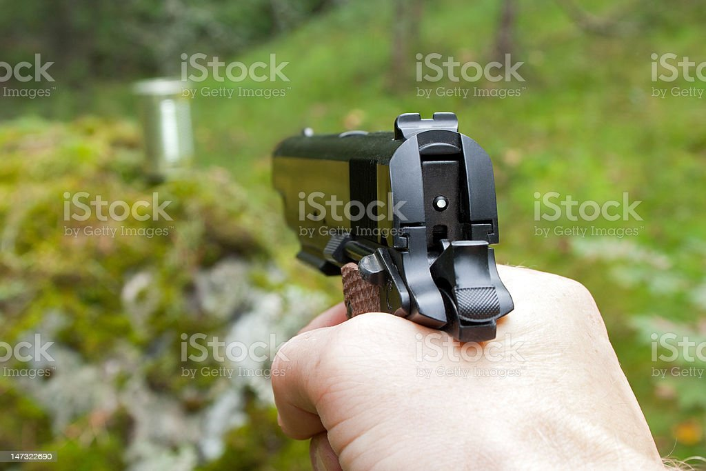 Shooting practice in the woods royalty-free stock photo