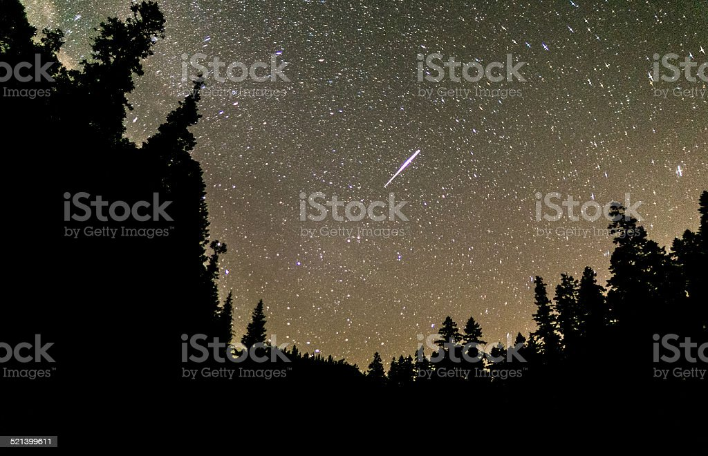 Shooting star flashes across the night sky in the forrest stock photo
