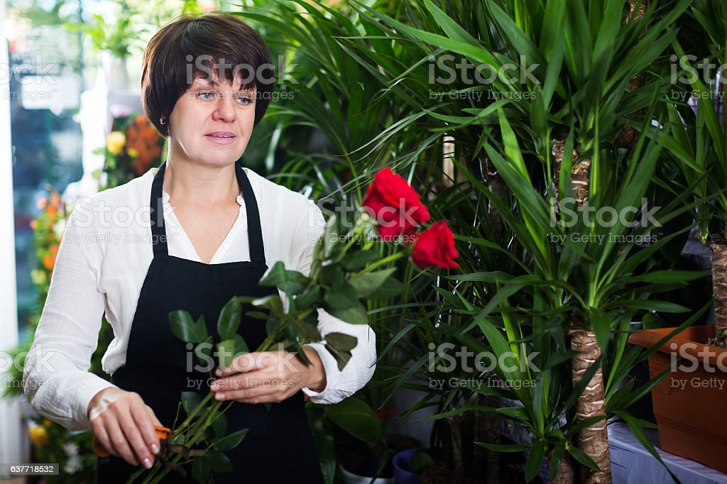 Shop assistant showing best roses stock photo