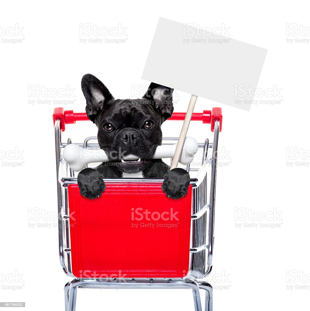 shopping cart dogs stock photo