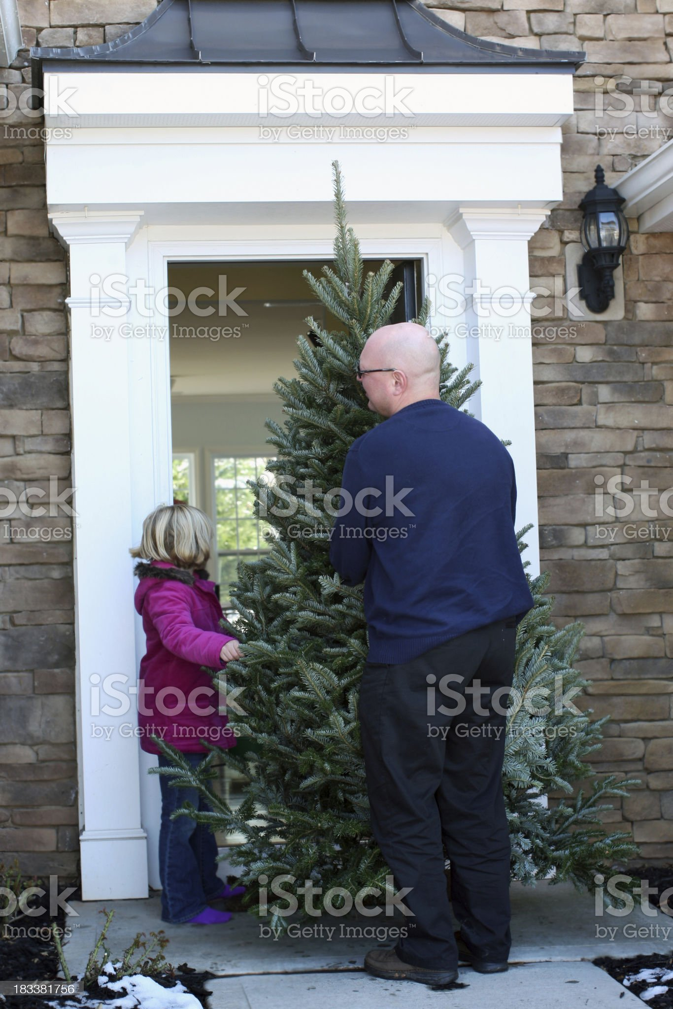 Shopping for Christmas tree royalty-free stock photo