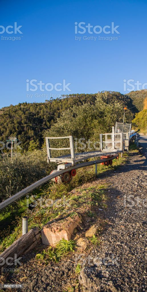 Shopping for Grape transport in terrace cultivation in Liguria.In the Cinque Terre area. stock photo