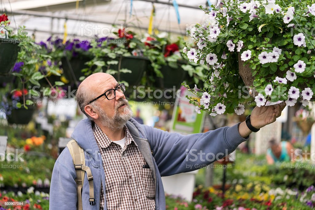Shopping in greeenhouse stock photo