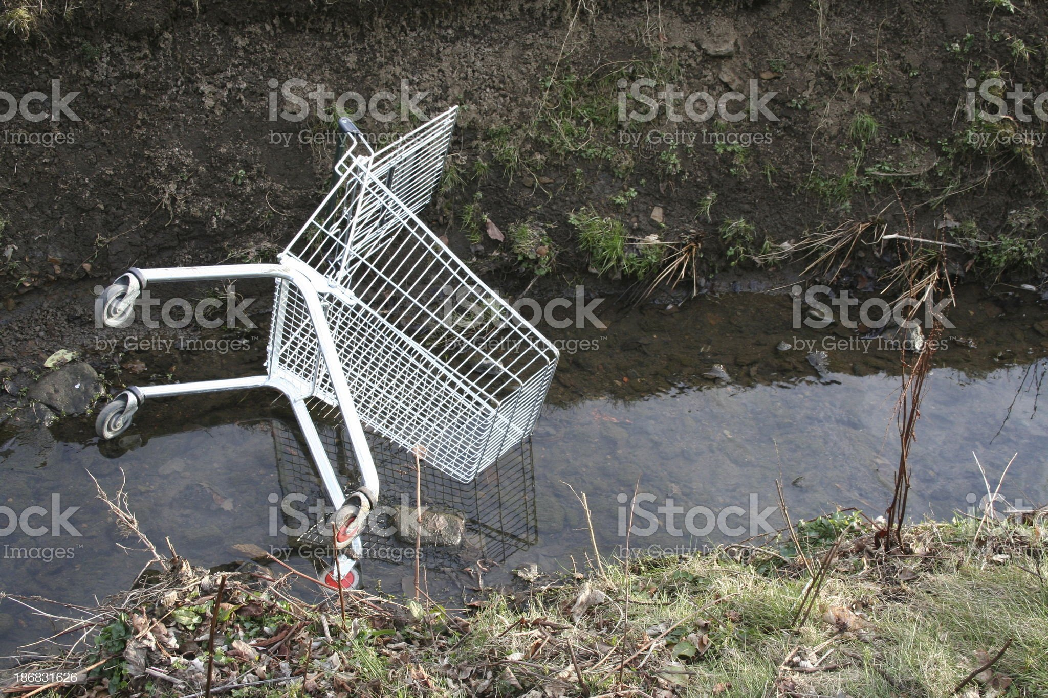 Shopping trolly in a stream royalty-free stock photo