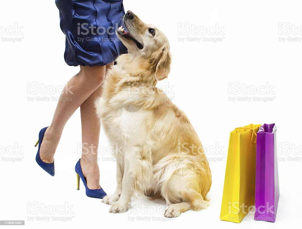 Shopping with dog royalty-free stock photo