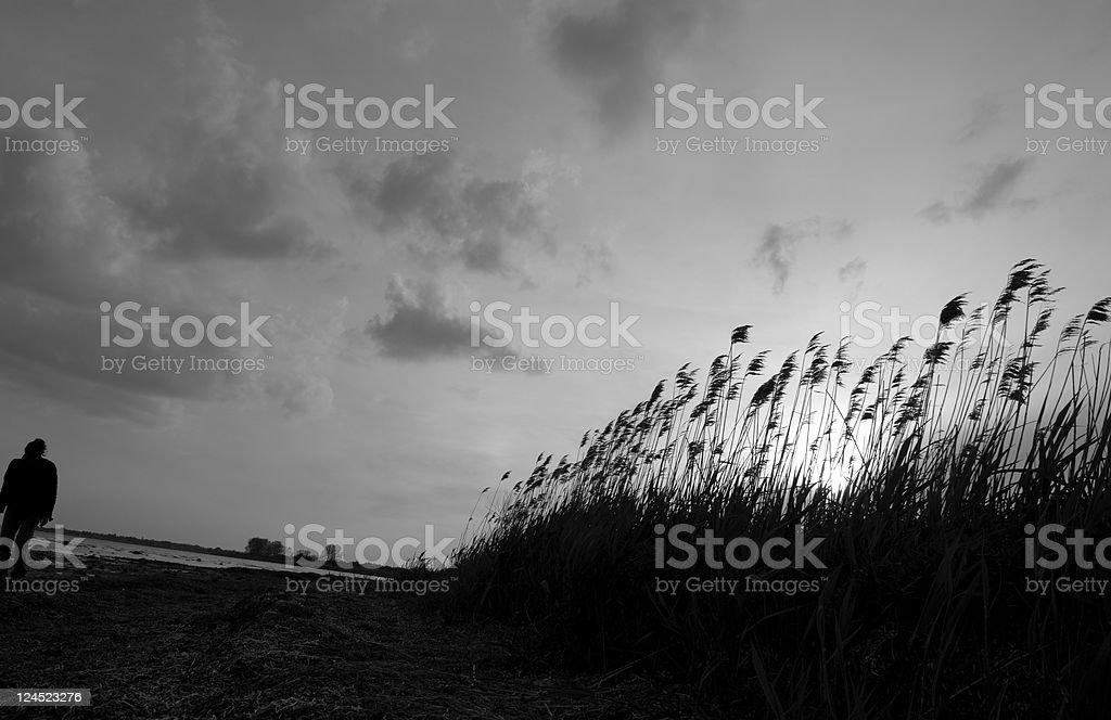 Shore of Desolation stock photo