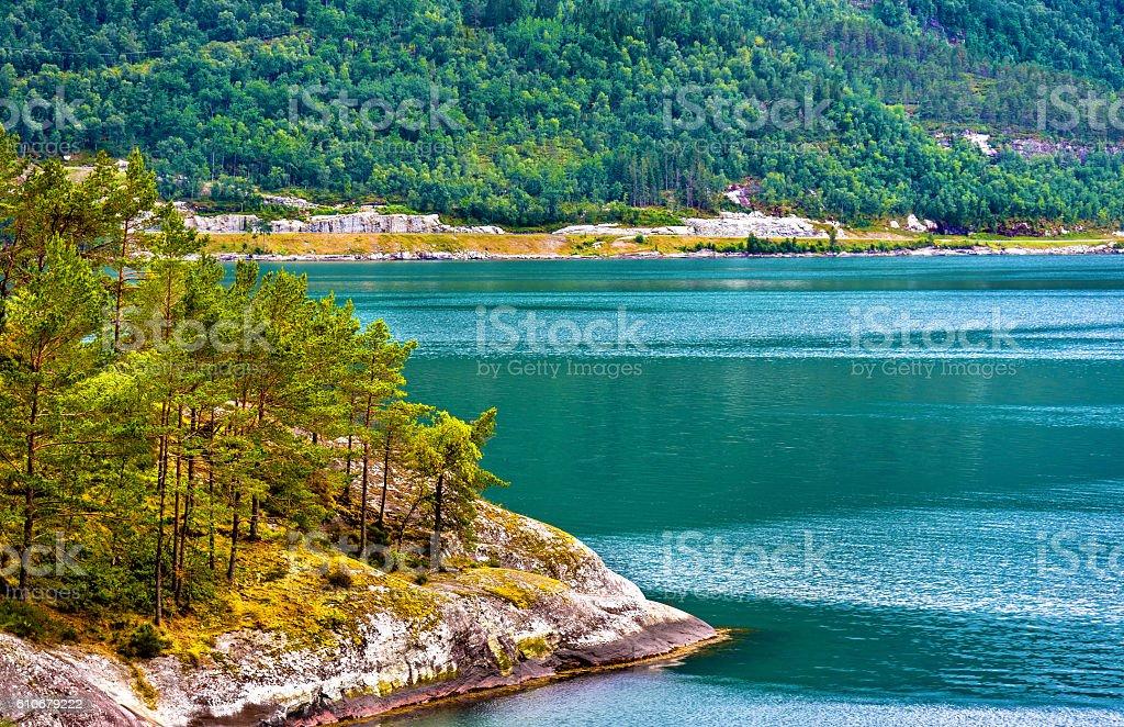 Shore of Innvikfjorden near Stryn - Norway stock photo