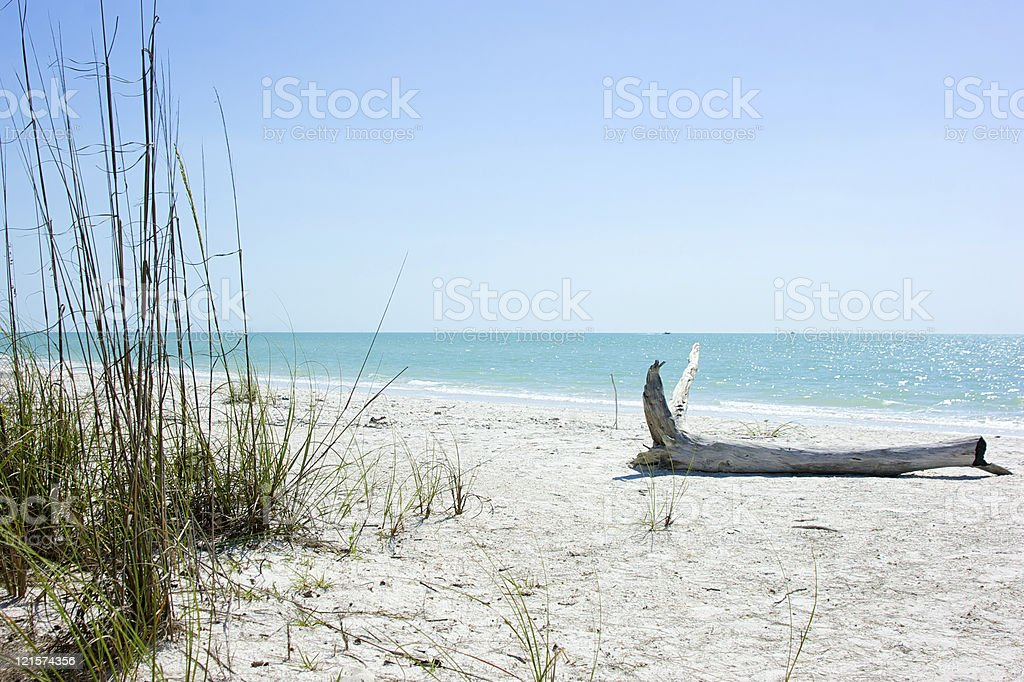 shore of tropical island royalty-free stock photo