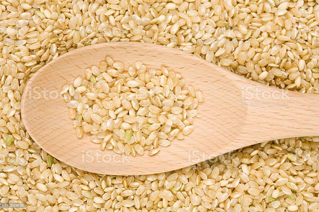 Short Brown Rice royalty-free stock photo