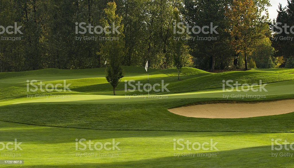Short golf course royalty-free stock photo