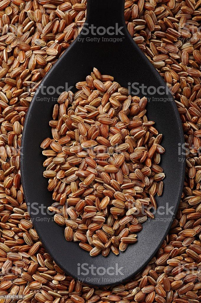 Short grain red rice stock photo