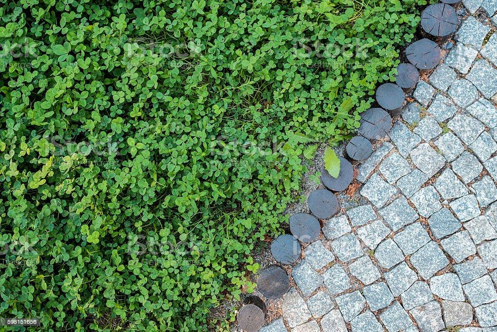 Short grass lawn and cobblestone pavement texture stock photo