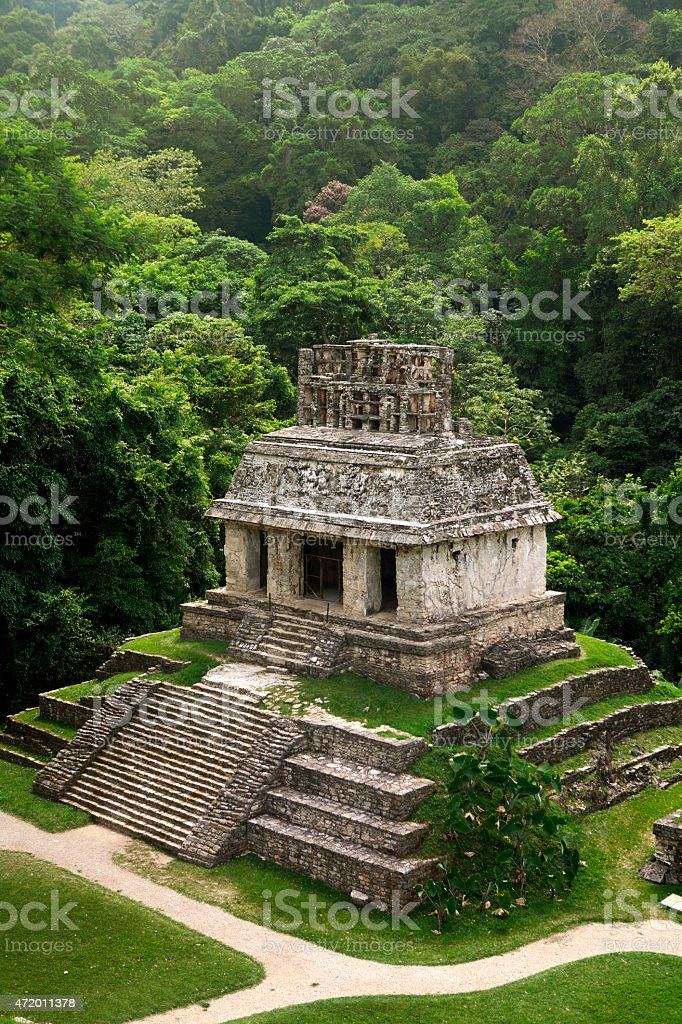 Short pyramid in Palenque Mayan ruins against green forest stock photo