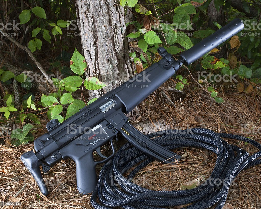 Short rifle stock photo