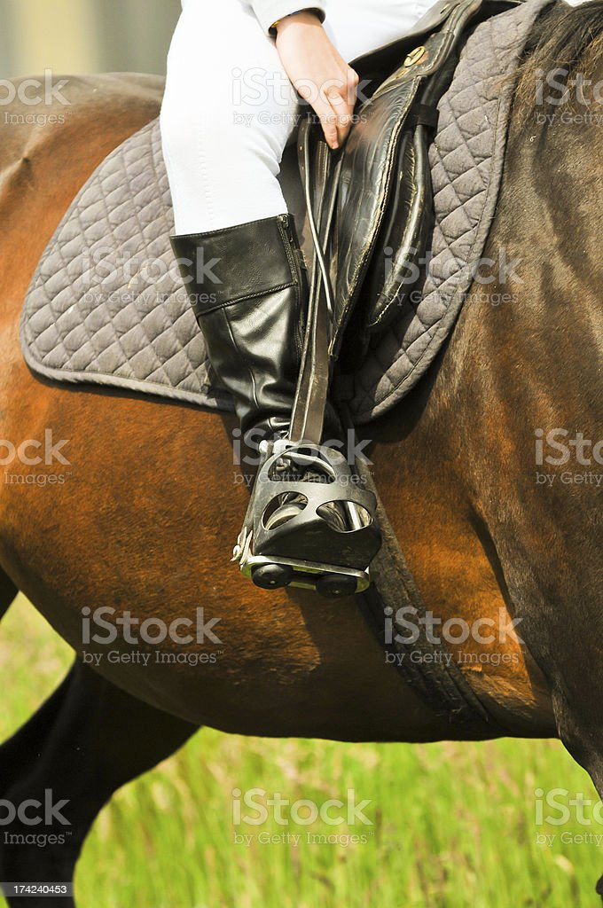 Shorten your stirrups! royalty-free stock photo