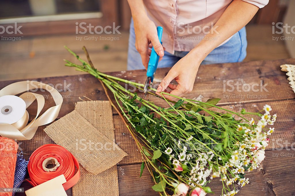 Shortening stems stock photo