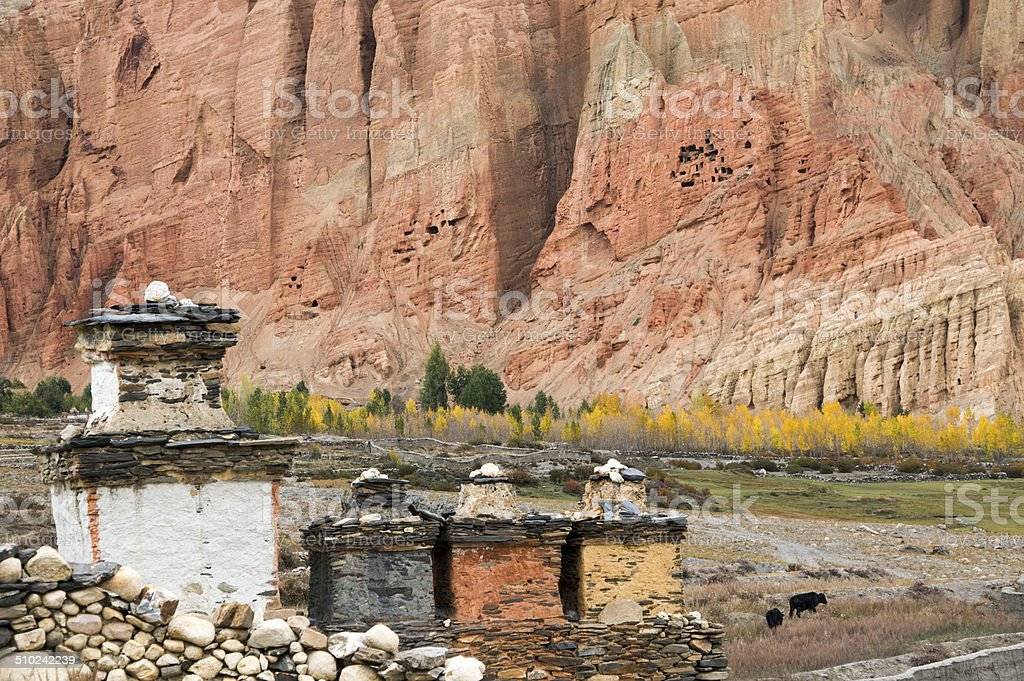 Shortens, yellow trees and red cliff in Dahkmar village, Mustang stock photo