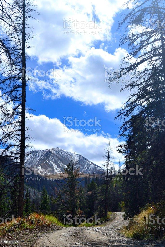 Shoshone National Forest, Wyoming, USA stock photo