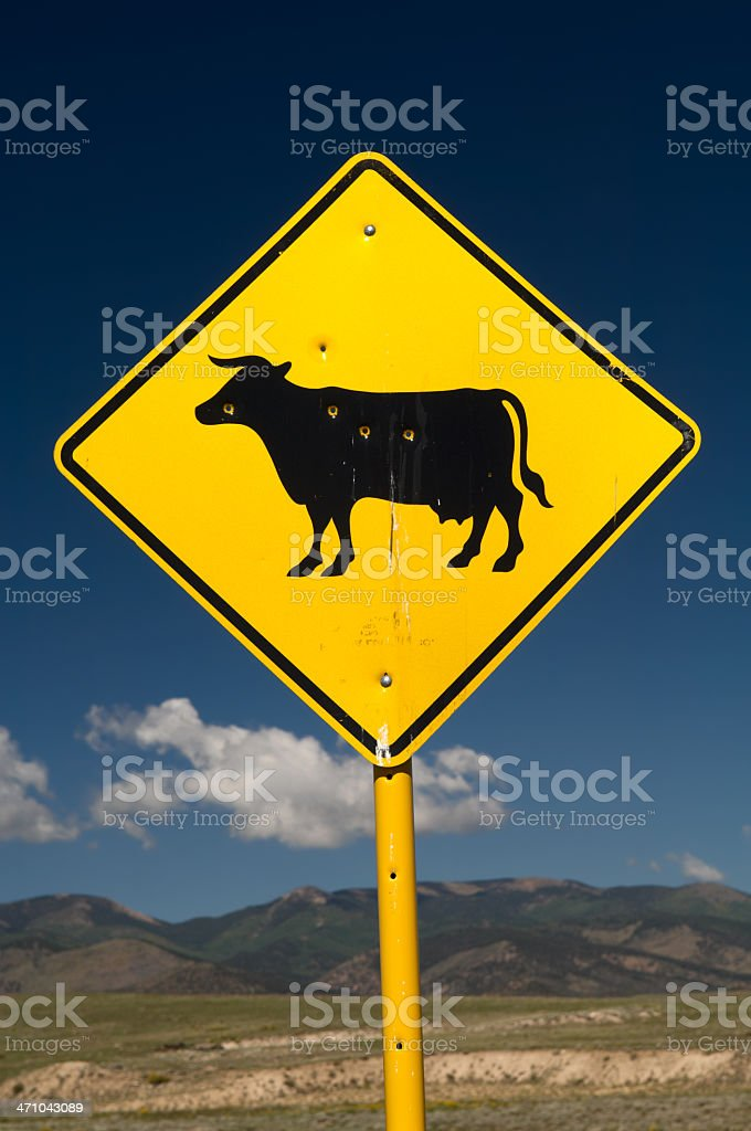Shot Cow Sign stock photo
