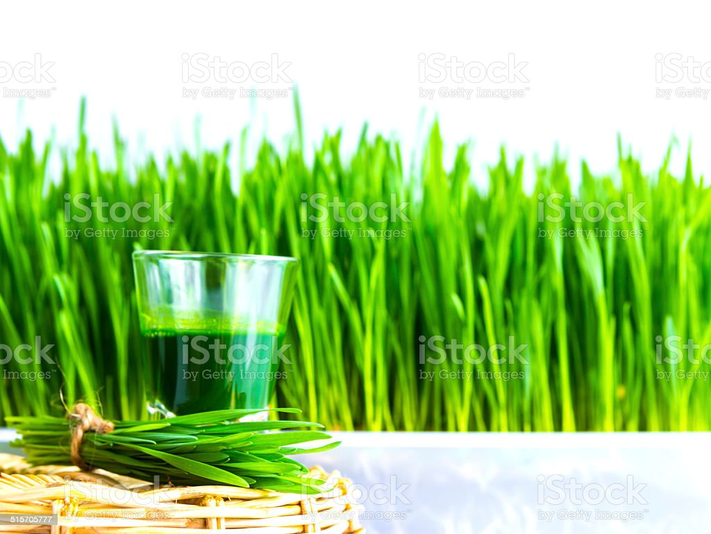 Shot glass of wheat grass stock photo