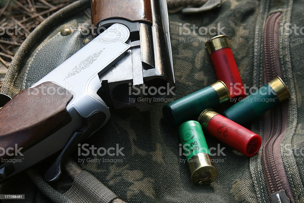 Shotgun And Cartridges stock photo
