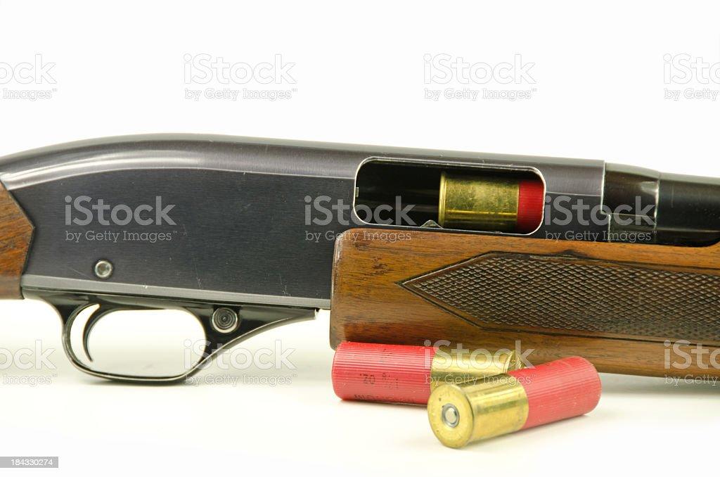 Shotgun and Shells stock photo