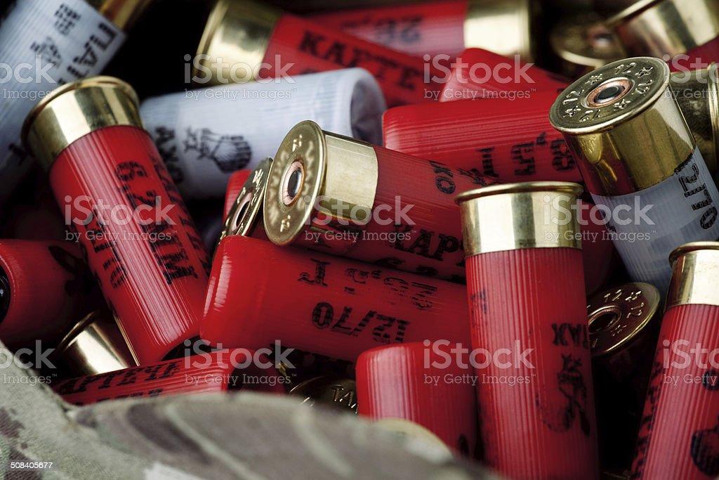 Shotgun cartridges stock photo