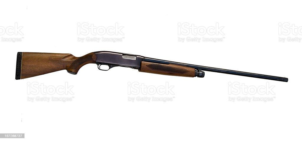 Shotgun Isolated stock photo