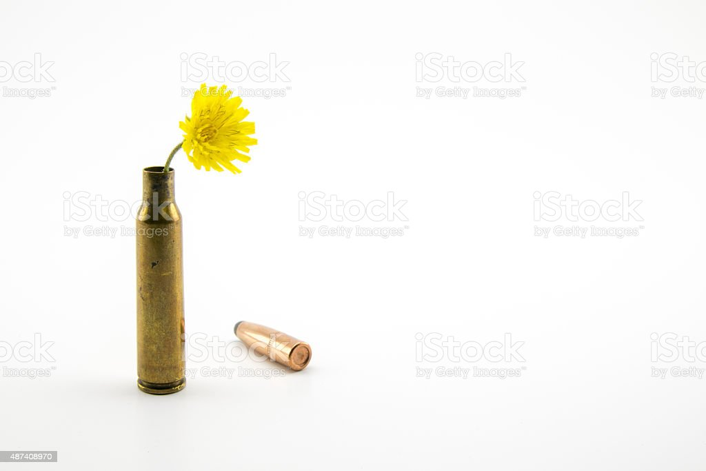 shotgun shell with yellow flower stock photo