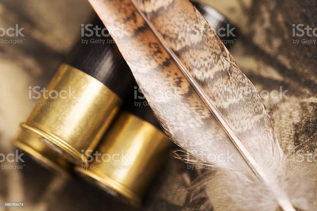 Shotgun Shells and Ruffed Grouse Feathers stock photo